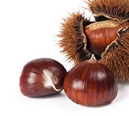 Nuts-Chesnut-Marron